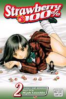 Strawberry 100% Vol. 2 by Mizuki Kawashita.