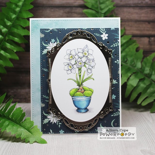 """Mossy Pots with Paperwhites by Allison Cope featuring """"Mossy Pots with Paperwhites"""" stamp set by Power Poppy"""