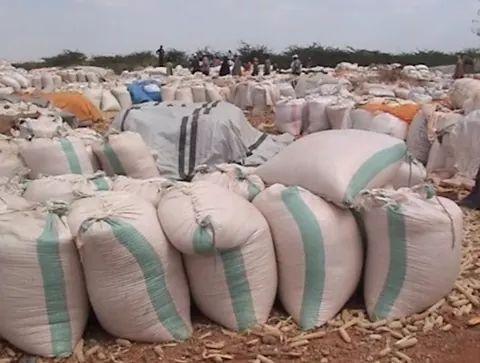 Bura irrigation scheme produce