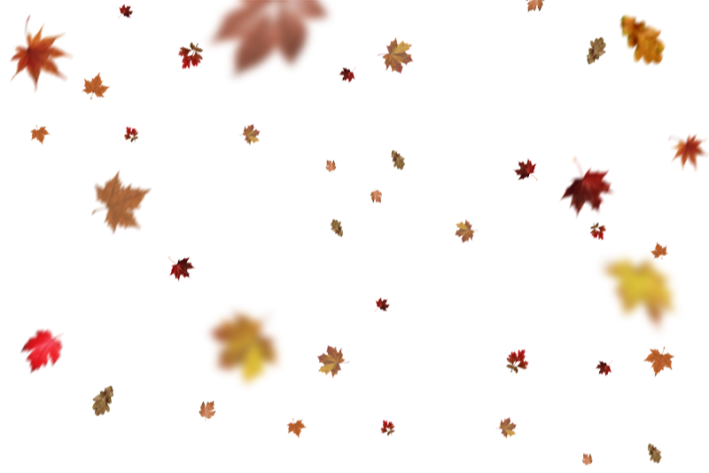 Best 10 Falling Leaves Overlays for Photoshop Free Download - Free Photoshop Overlays