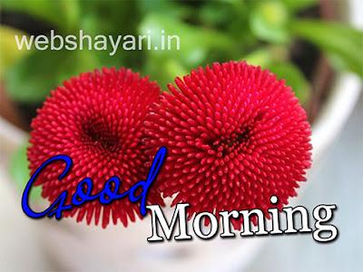 गुड मॉर्निंग  का फूल फोटो डाउनलोड