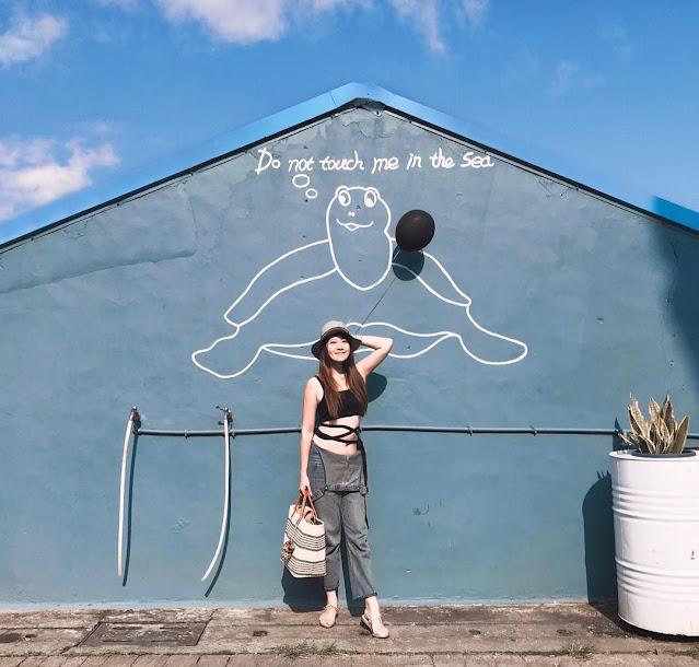 小琉球景點-海龜牆