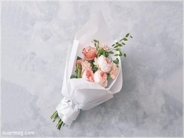 صور ورد - خلفيات ورد 3 | Flowers Photos - Roses wallpapers 3