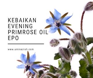 Kebaikan Evening Primrose Oil EPO dalam GLA Complex Shaklee