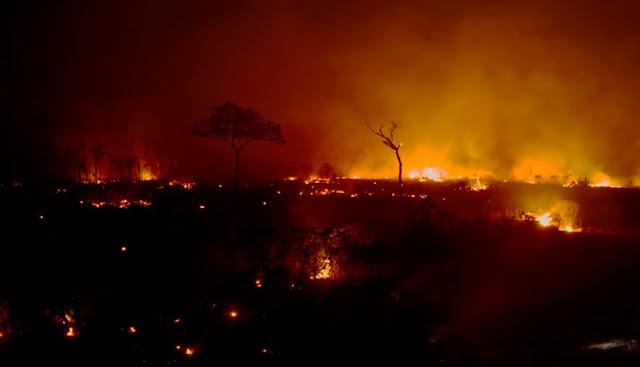 Incendios en la Amazonia es una amenaza para indígenas, dice ONG Land is Life