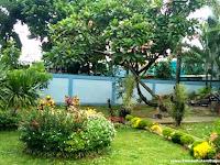 Cantiknya Taman Rumah Minimalis Mungil