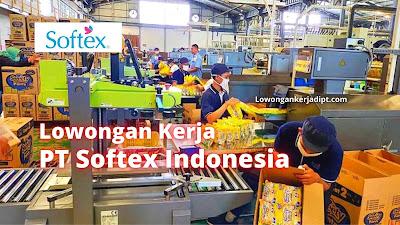 Lowongan Kerja PT Softex Indonesia