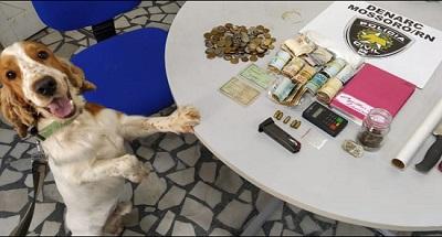 Polícia Civil apreende drogas, munições e dinheiro em Mossoró