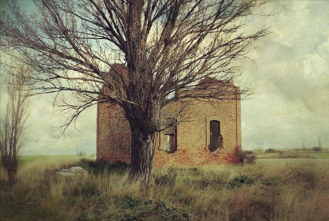 Sue os olvidados - La casa de los suenos olvidados ...