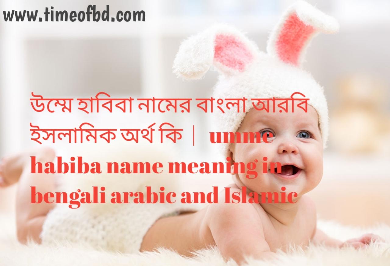 উম্মে হাবিবা নামের অর্থ কী, উম্মে হাবিবা নামের বাংলা অর্থ কি, উম্মে হাবিবা নামের ইসলামিক অর্থ কি, umme habiba name meaning in bengali