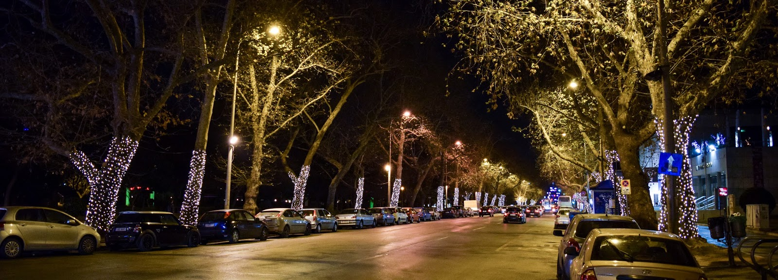 New Year decorations on the trees - Thessaloniki