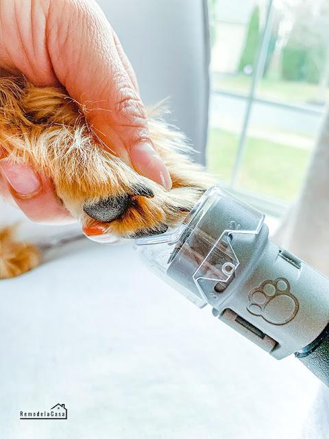 Dremel Pet grooming nail guard