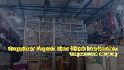Supplier Pupuk Dan Obat Pertanian