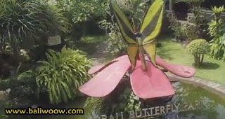 Butterfly Barong in Bali Buterfly Park.