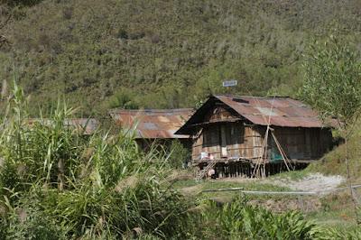 Rumah Kaki Seribu Suku Arfak Papua