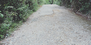 Jalan Penghubung Antar Desa di Pakkat Minim Perhatian Pemerintah