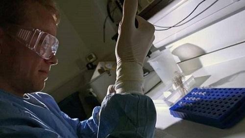 علماء يكتشفون عن طريق الصدفة دواء يعالج جميع أمراض البرد