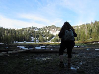 northern california travel destinations