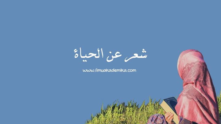 syair arab tentang kehidupan