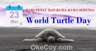 Fakta Sejarah Hari Penyu dan Kura-kura Sedunia (World Turtle Day) 23 Mei