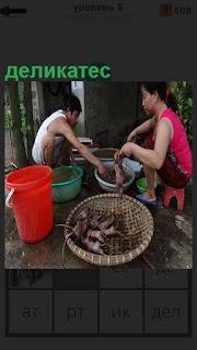 Мужчина и женщина готовят деликатес, перед ними большой таз и ведро