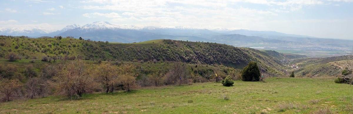 DSC03016 Panorama