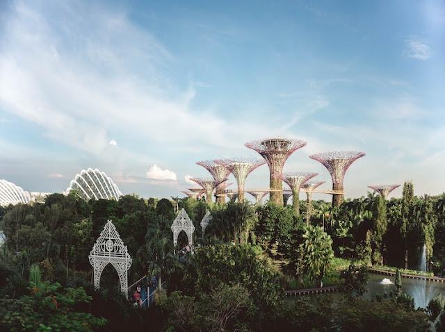 Đi singapore làm việc: Làm điều này tại Gardens by The Bay