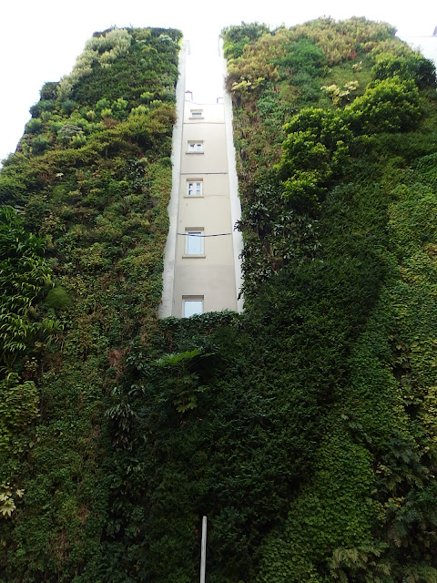 View of the tallest part of the wall on Rue d'Alsace