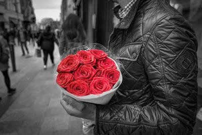 mawar merah floweradvisor