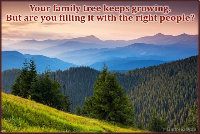Here are 3 smart ways to make sure you're adding the right people to your family tree.