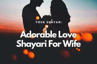 Love Shayari For Wife In Hindi To Impress Her