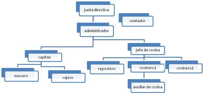 Albaricoque Restaurante Definición Estructura Organizacional