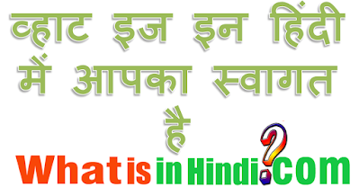What is the meaning of Marital status in Hindi