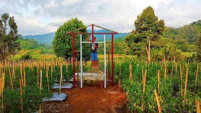 Berdayakan Lahan Pertanian, Jemaat Gmim Imanuel Torout Buka Pekan Wisata 2021
