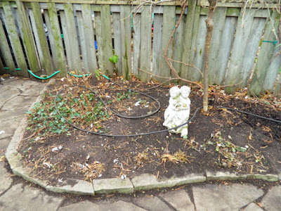 Greenwood-Coxwell Fall Garden Clean up after by Toronto Paul Jung Gardening Services
