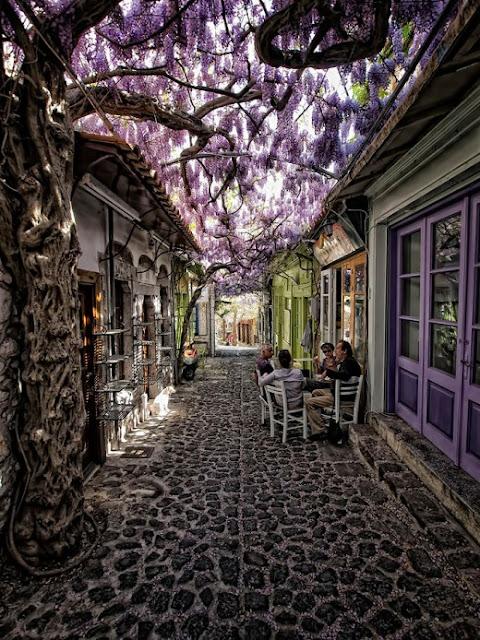 Το ομορφότερο δρομάκι στον κόσμο