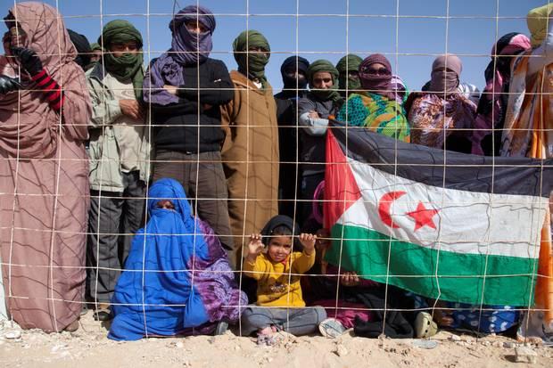 La UE, cómplice del robo de los recursos naturales del Sáhara Occidental.