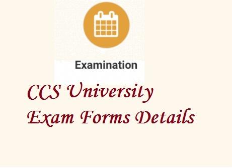 CCS University Exam Form