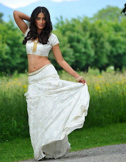 Ileana Latest Lehanga Photos