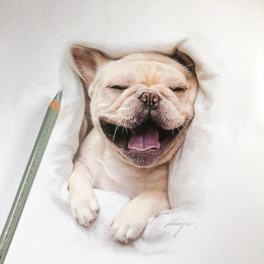 05-Smiling-French-Bulldog-Quanyu-www-designstack-co