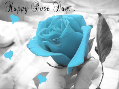 happy-rose-day-Pictures-2017