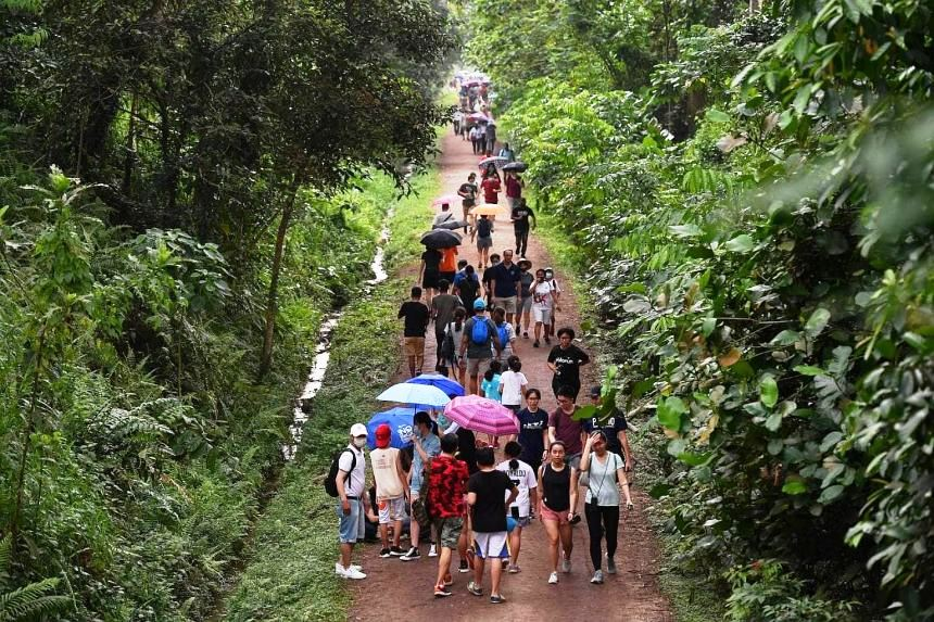 Visitors to Rail Corridor shocked by large crowds on Good Friday, posted on Tuesday, 06 April 2021