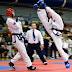 Η στάση του γονέα απέναντι στον πρωταθλητισμό στο άθλημα του παραδοσιακού taekwon-do ,του Αφεντούλη Γ.