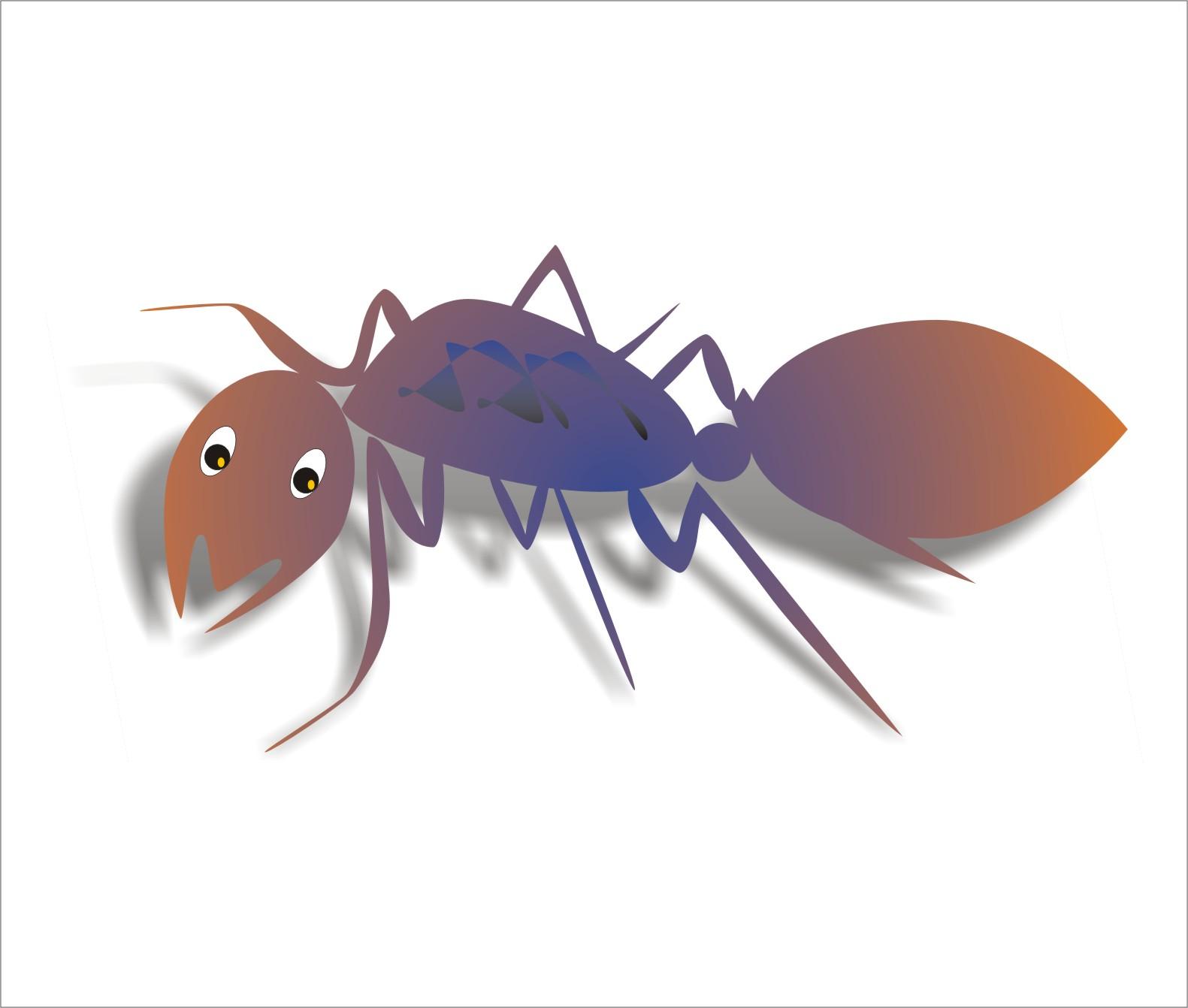 Semut Yang Bersayap Cerita Tentang Semut