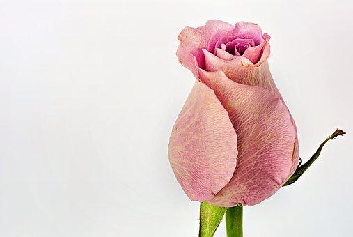 Poetic Romantic Love Messages