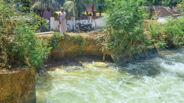 News, Kerala, Palakkad, Family, Executive Engineer, Bund, Road, Agriculture, Housewife Worried About Leaking Strength of Canal Bund