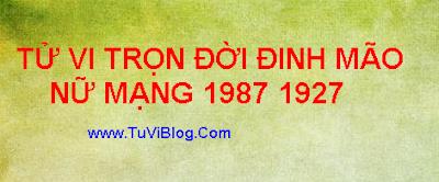 TU VI DINH MAO 1987