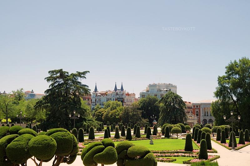 Gewächse im Retiro-Park Madrid, Spanien, im Sommer Sehenswürdigkeiten