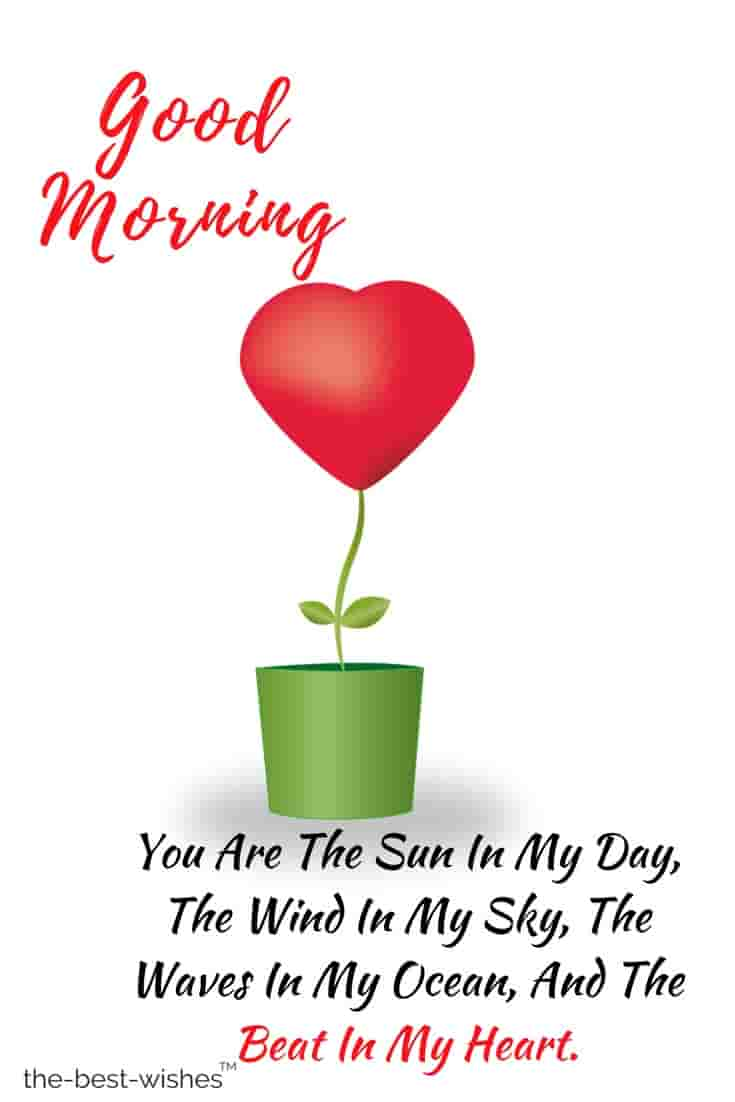 morning quotes on love