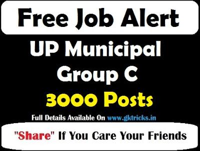 UP Municipal Group C Recruitment 3000 Posts